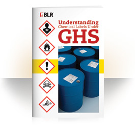Understanding Chemical Labels under GHS